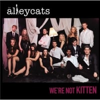 The Alleycats | We're Not Kitten