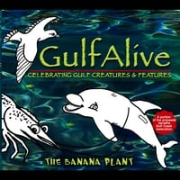 The Banana Plant | Gulf Alive