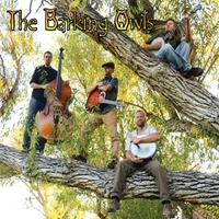 The Barking Owls | The Barking Owls