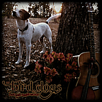 The Bird Dogs | Fool Hearted Dreams