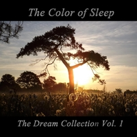 http://images.cdbaby.name/t/h/thecolorofsleep.jpg