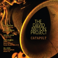 The David Mitton Project | Catapult