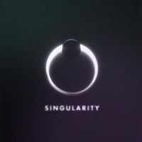 The Disconnect | Singularity