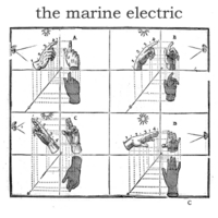 The Marine Electric | The Marine Electric