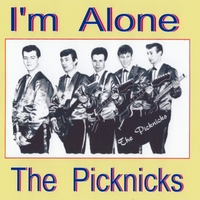 The Pick-Nicks | I'm Alone