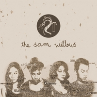 The Sam Willows | The Sam Willows