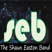 The Shaun Easton Band | Excuses or Apologies