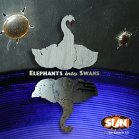 The Sun Sawed in 1/2 | Elephants Into Swans