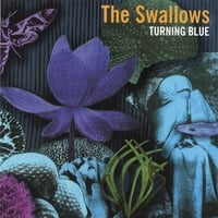 The Swallows | Turning Blue