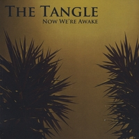 The Tangle | Now We're Awake
