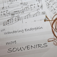 The Wandering Endorphin | More Souvenirs