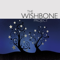 The Wishbone Project | Winter Night