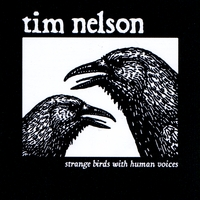 tim nelson | strange birds with human voices