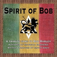Timothy Costa & The Shival Experience | Spirit of Bob