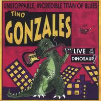 Tino Gonzales | Live at the Dinosaur 2