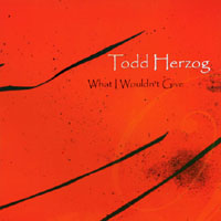 Todd Herzog | What I Wouldn't Give