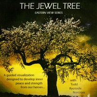 Todd Norcross | The Jewel Tree -Eastern View Series - Disc 2