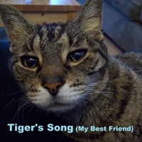 Tom Templeman | Tiger's Song (My Best Friend)