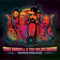 Bumblefoot to collaborate with Tony Harnell on acoustic project Tonyharnellthewildflower