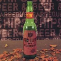 Too Slim and the Taildraggers | Beer & Barbeque Chips