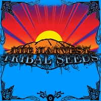 Tribal Seeds | The Harvest