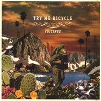 Try Me Bicycle | Voicings
