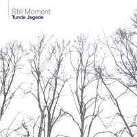 Tunde Jegede | Still Moment