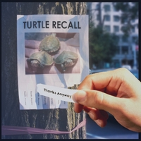 Turtle Recall | Thanks Anyway
