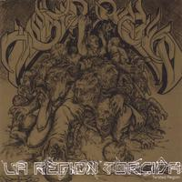 Twisted Region | La Region Torcida