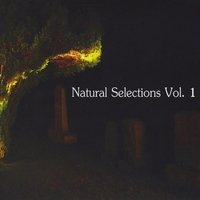 Various Artists | Natural Selections Vol. 1