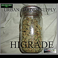 Urban Garden Supply | Higrade