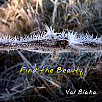 Val Blaha | Find the Beauty