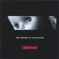 Lendi Vexer | THE PROCESS OF DISILLUSION
