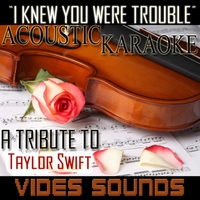 Vides Sounds | I Knew You Were Trouble (Acoustic Karaoke Version)