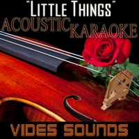 Vides Sounds | Little Things: One Direction (Acoustic Karaoke Version)