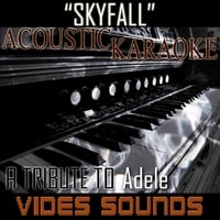 Vides Sounds | Skyfall (A Tribute to Adele) [Acoustic Karaoke Version]