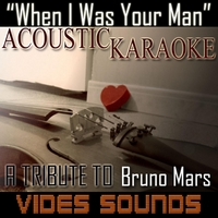 Vides Sounds | When I Was Your Man (A Trtibute to Bruno Mars) [Acoustic Karaoke Version]