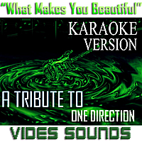 Vides Sounds | What Makes You Beautiful (Karaoke Version) [A Tribute to One Direction]