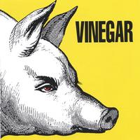 Vinegar | Rock Fetish