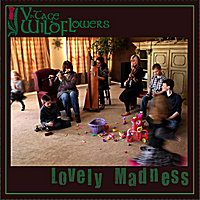 Vintage Wildflowers | Lovely Madness