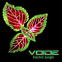 Voide | Electric Jungle