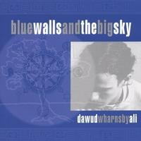 Dawud Wharnsby | Blue Walls And The Big Sky