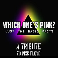 Which One's Pink? : Pink Floyd Tribute: Just the basic facts