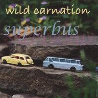 Wild Carnation | Superbus