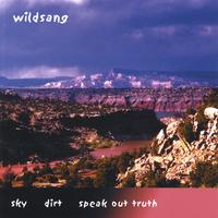 WILDSANG | SKY DIRT SPEAK OUT TRUTH - blues/folk & murder ballads