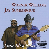 Warner Williams & Jay Summerour | Little Bit a Blues