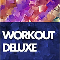 Various Artists | Workout Deluxe: Pro Mix
