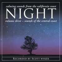 Scott Wyker | Night