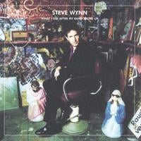 Steve Wynn | What I Did After My Band Broke Up/Visitation Rights (2CD)